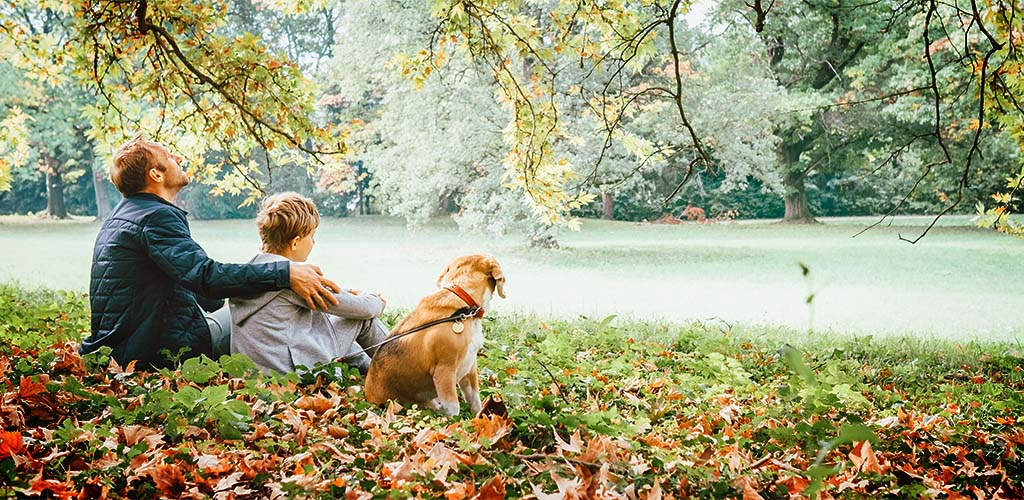 Father with son walk with beagle dog and enjoy warm autumn day