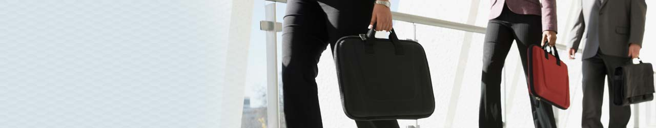Business Professionals With Briefcases