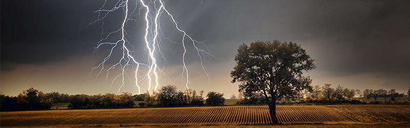 lightning crashing over farm field