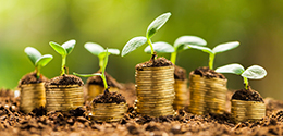 coins stacked up with plants for financial growth